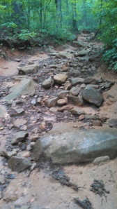 The steep, rocky climb to the top