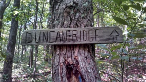 Hand-carved Duncan Ridge Trail Sign